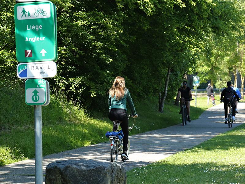 Die Fahrradtouren des Sommers
