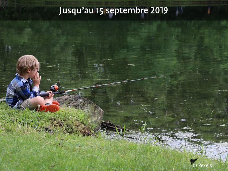 Initiation à la pêche en Terre de Meuse