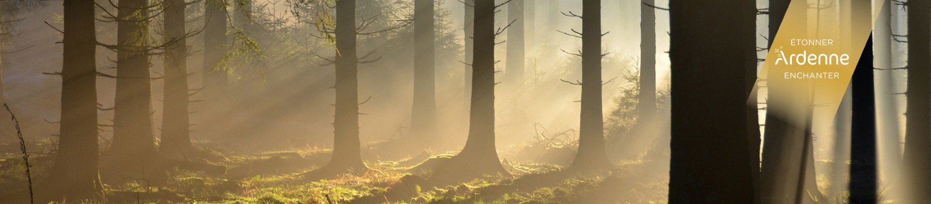 Destination Ardennen