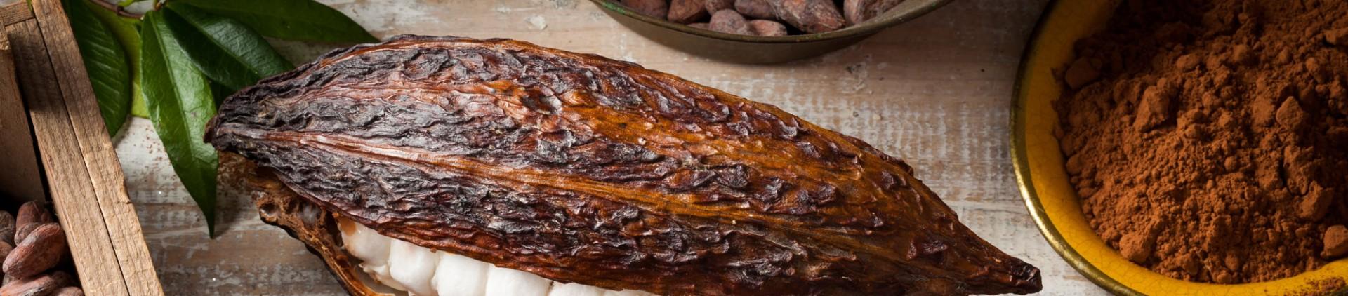 Les producteurs - Route du chocolat en province de Liège