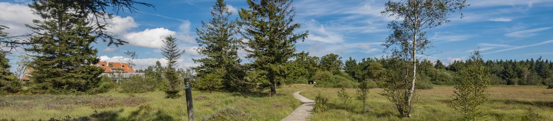 Malmedy - A la découverte des Hautes-Fagnes