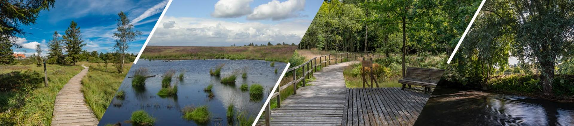 Parcs naturels reconnus en province de Liège