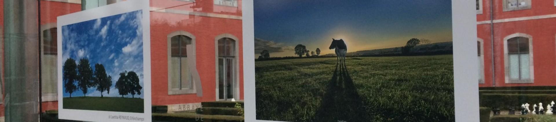 Voyagez… en toute sécurité - Concours photo « Nature » de l'Abbaye de Stavelot