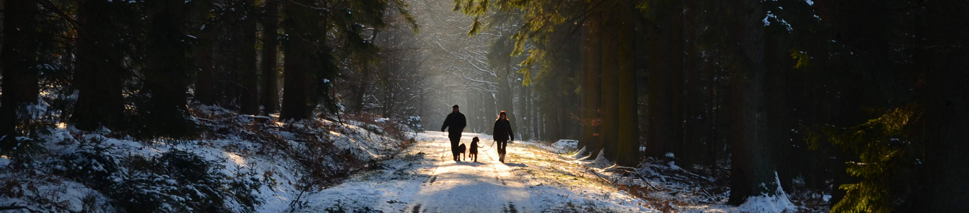 Wanderungen im Schnee in der Provinz Lüttich