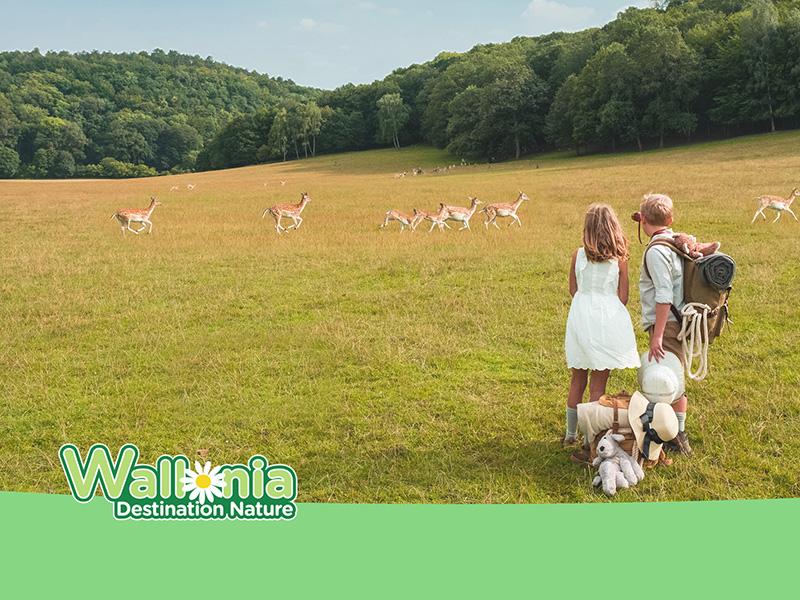 Wallonia Nature