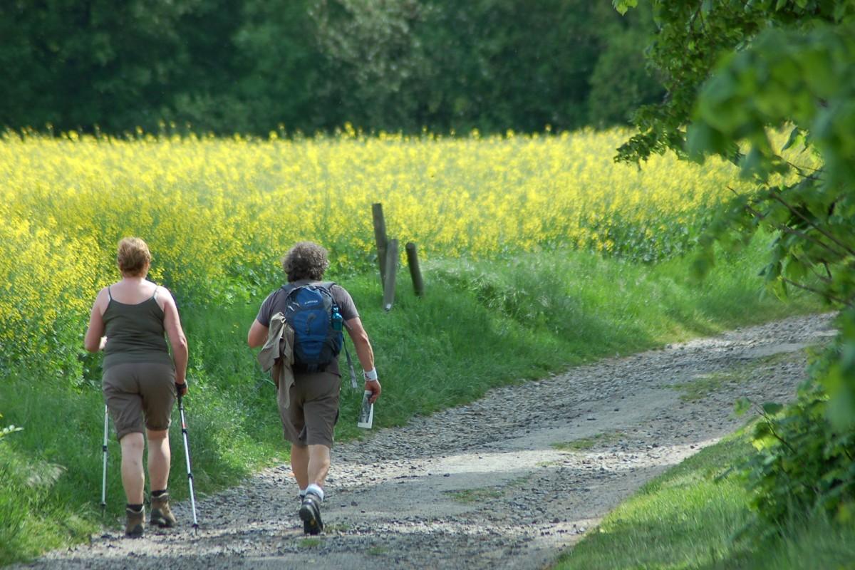 Balades et randonnées en province de Liège et en Ardenne