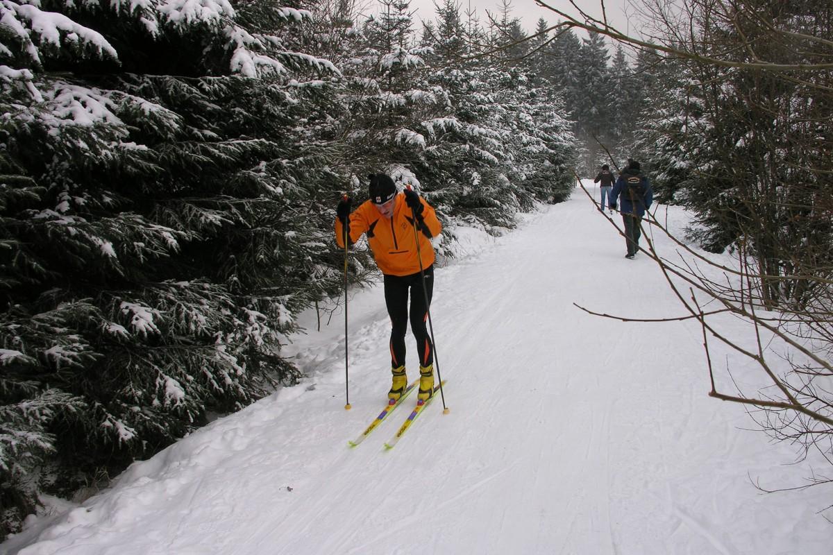 Ski de fond - Signal de Botrange