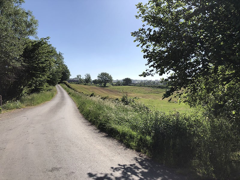 Summer bike rides - Stroll of the hedgerow landscape