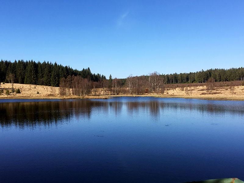 Balades en boucle - Les Hautes Fagnes-Ternell