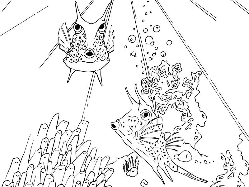 Envoyez votre dessin à l'Aquarium
