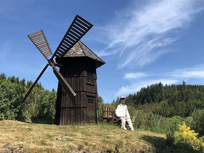 Les balades vélo de l'été - La forêt d'Ommerscheider