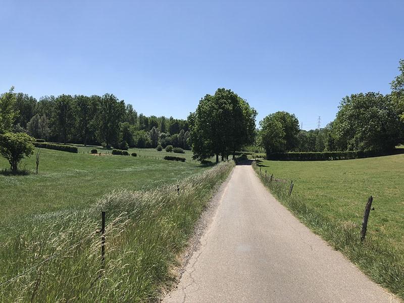 Die Fahrradtouren des Sommers - Auf der Stein-Route