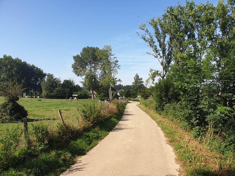 Momalle-Val du Geer - Chemin campagnard - Oreye