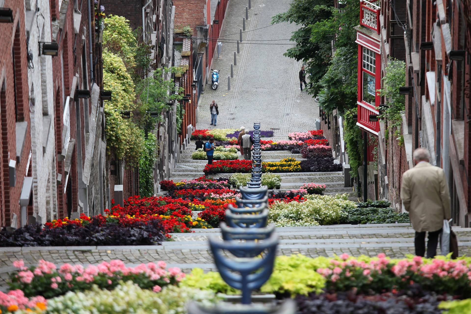 Montagne de Bueren - Escaliers en fleur