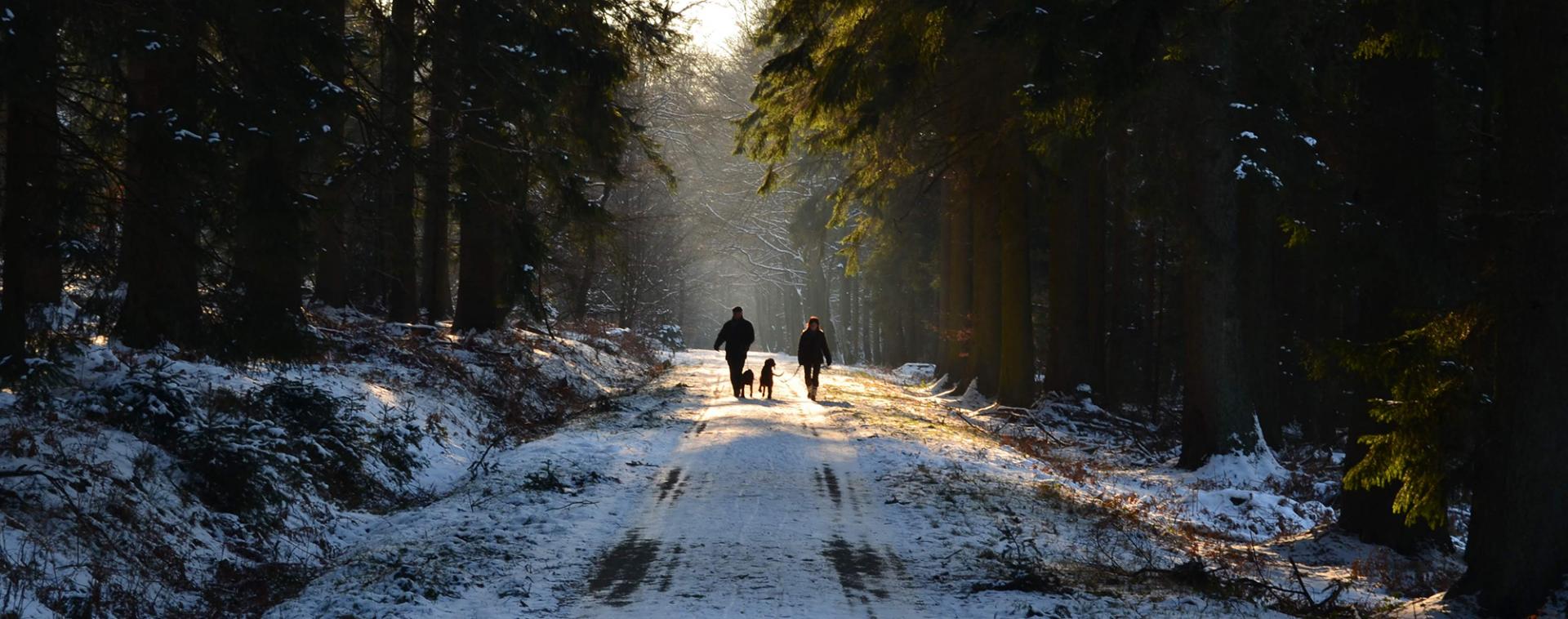 Wanderungen im Schnee in der Provinz Lüttich | © FTPL