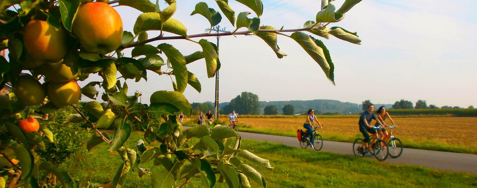 Land van Herve | © Maison du Tourisme du Pays de Herve