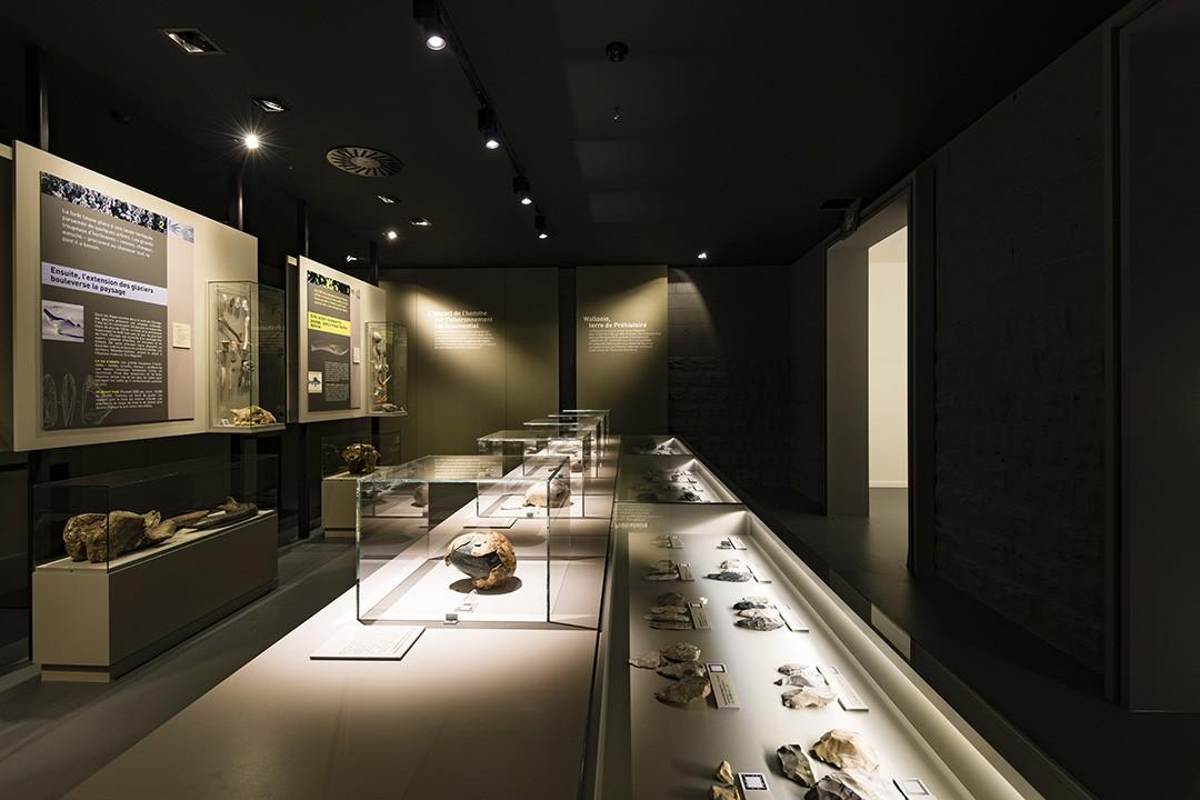 Prehistomuseum - Flémalle | © FTPL - Jean-Marc Léonard