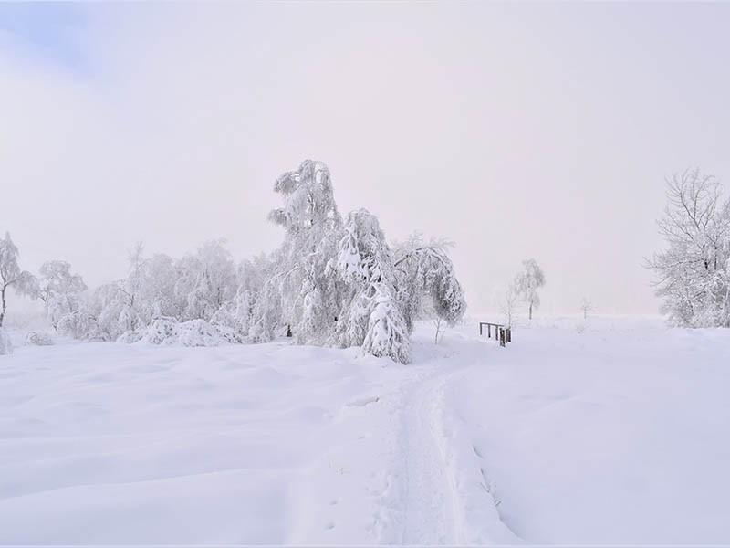 Promenade hivernale en Province de Liège