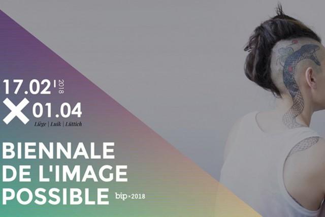 Biennale de l'Image Possible   ©