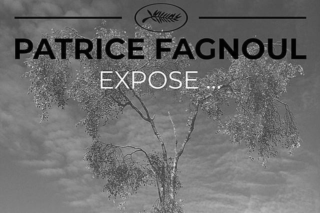 Expo Patrice Fagnoul - Hamoir | © Patrice Fagnoul
