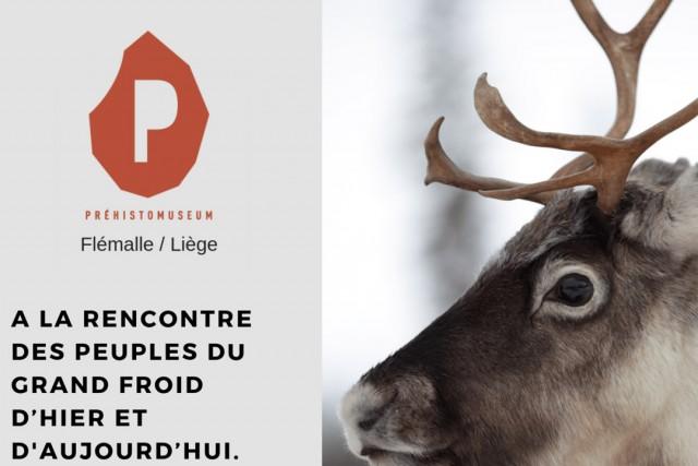 Exposition : Vivre avec les rennes | © Prehistomuseum