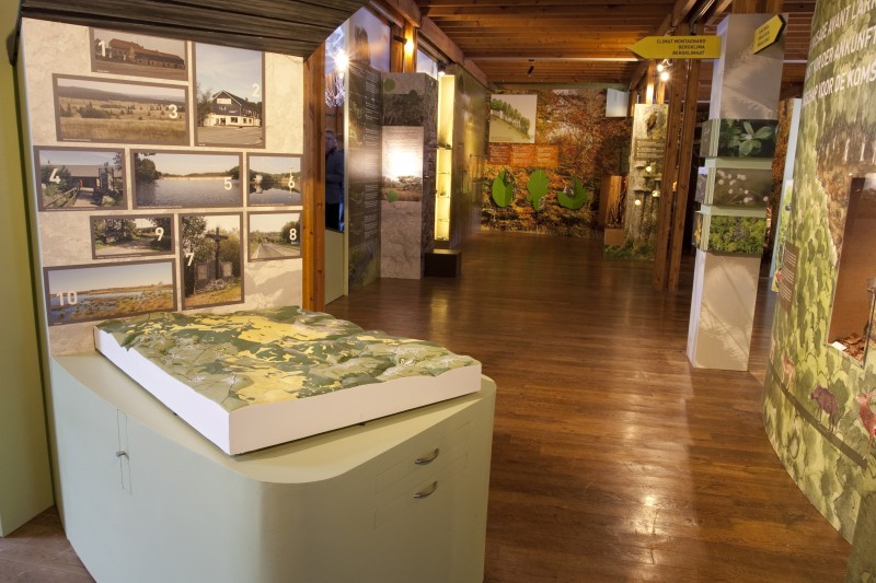 Musée Fania
