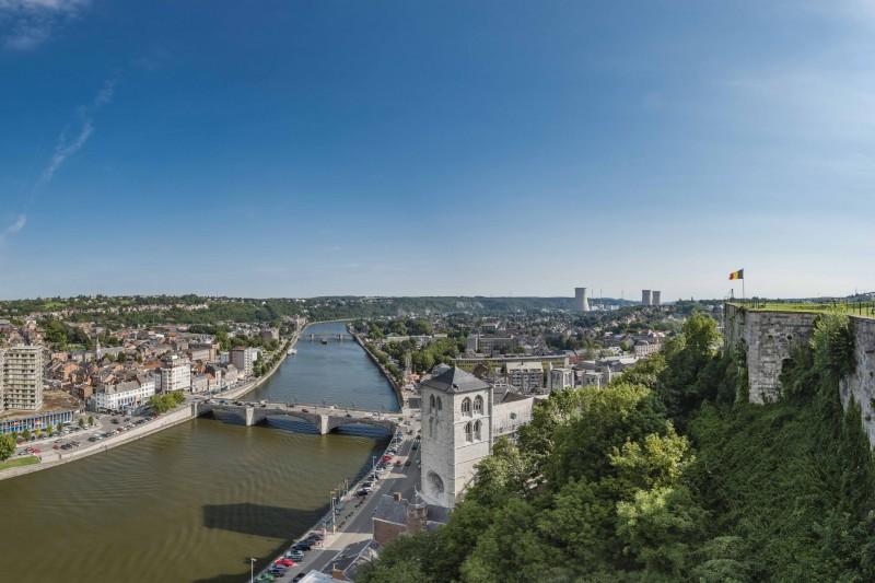 Vue de Huy avec le Fort, la Collégiale, le pont et la Meuse