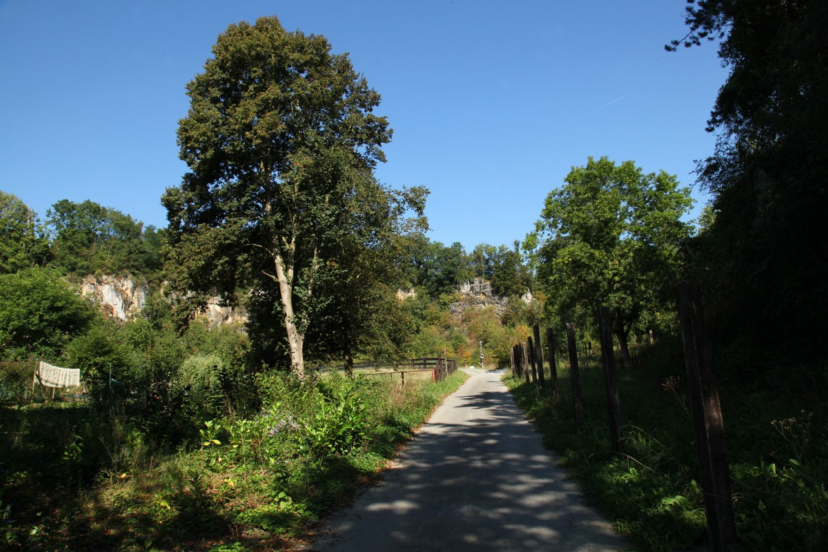 Clos de la Carrière - Moha - Chemin vers le clos