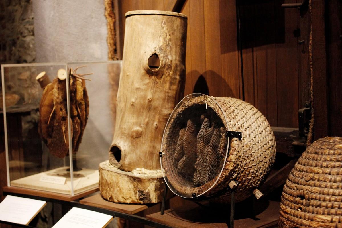 Musée de l'Abeille - Tilff - Début des ruches