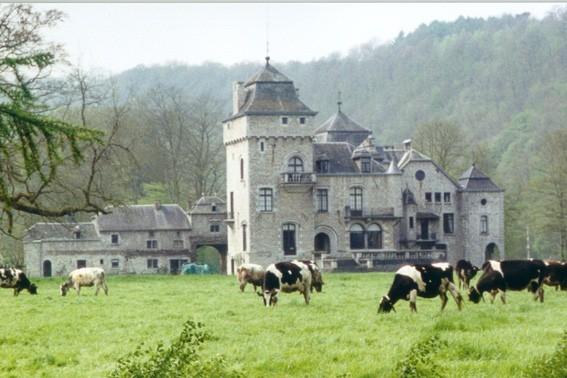 Château de Lassus