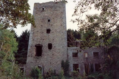 Ruines du Donjon Reinarstein