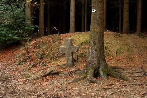 Arbre et Croix St Christophe