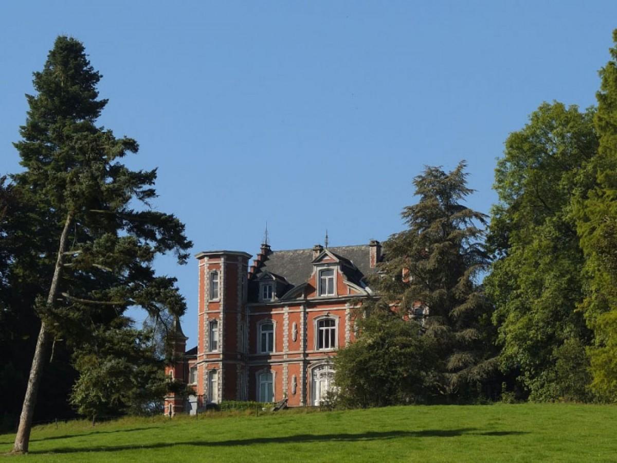 Chateau d'odeigne