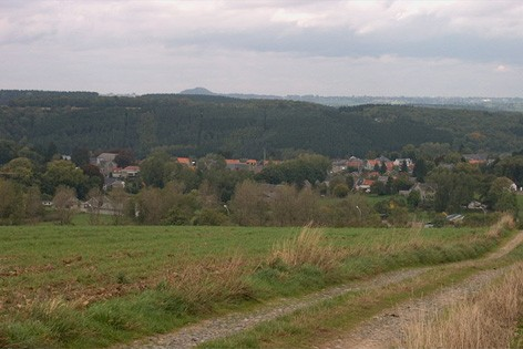 Panorama sur forêt