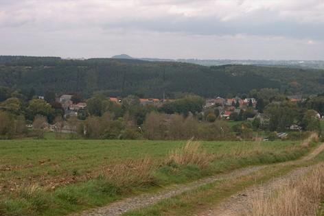 Panorama sur forêt