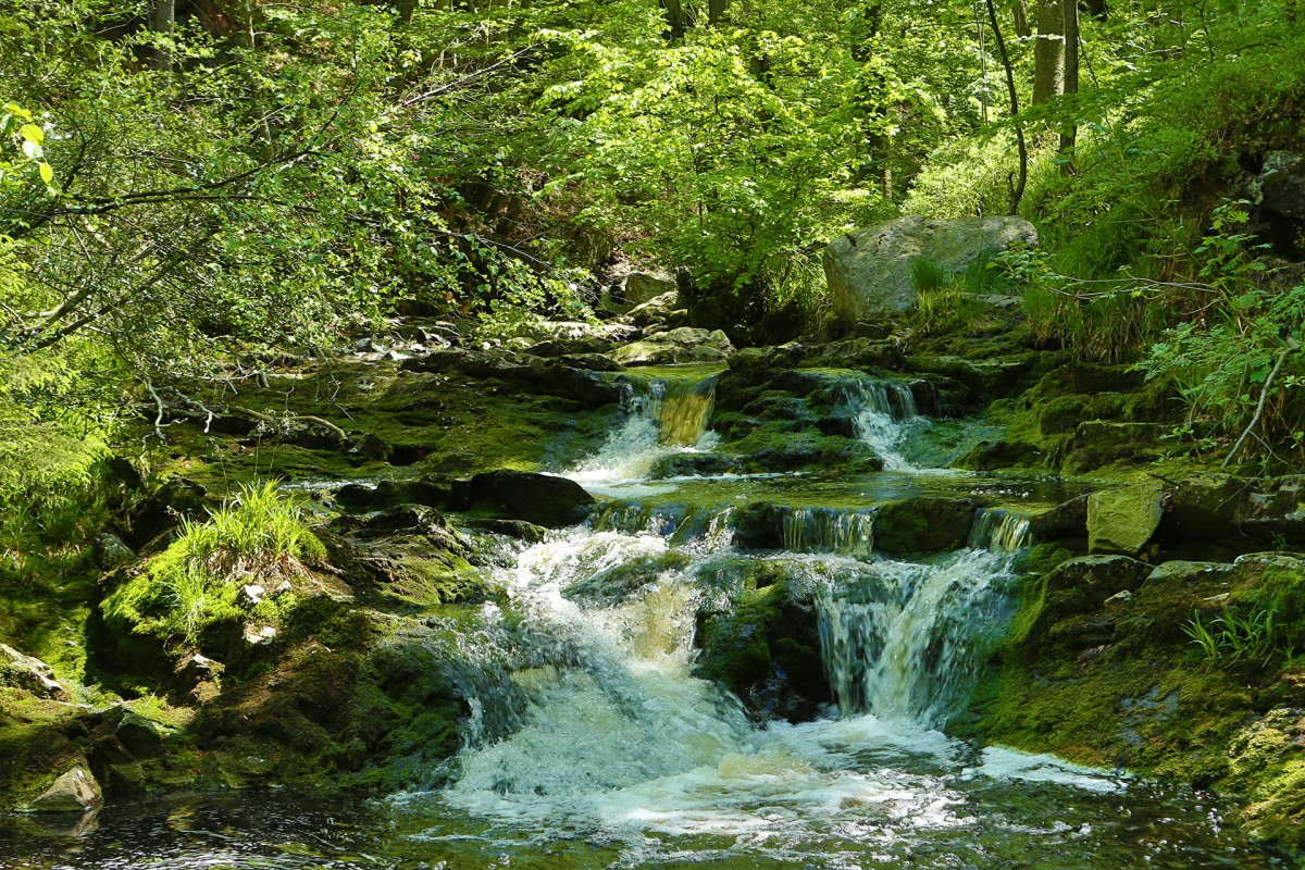 La Hoëgne - Jalhay - Cascades