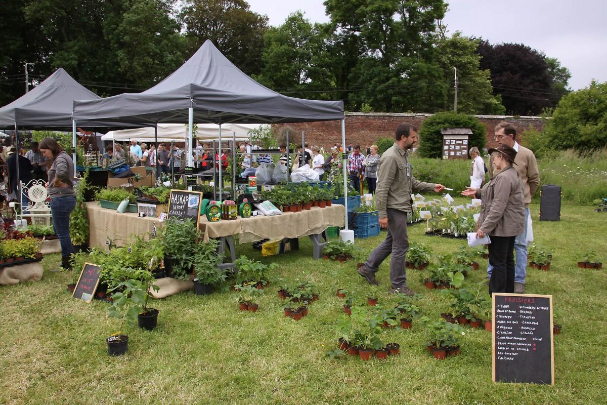 Jardin Plantes Pitet – Braives – Vue jardin