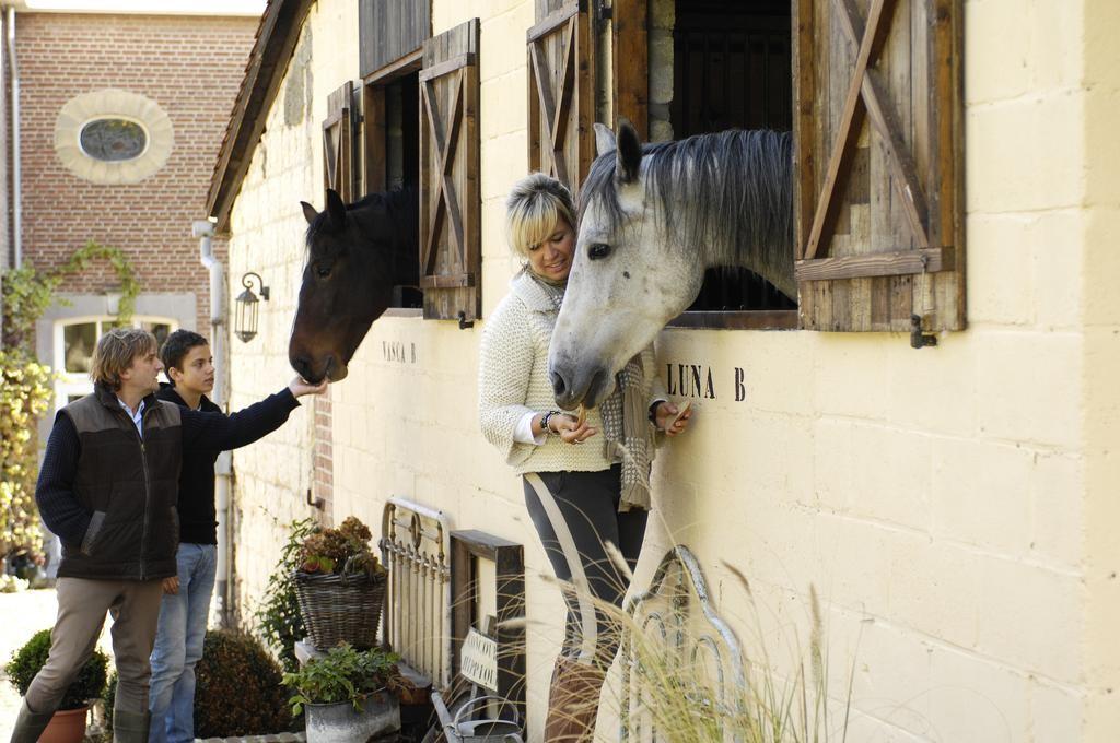 Villa Bayard chevaux