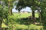 Fietsen, Treinen & Landschappen - Lijn 38 - RAVeL -  Weiden