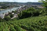 Clos Bois Marie - Huy - Vignoble et vue sur Huy