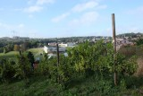 Coteaux de la Légia - Ans - Vignes et paysage