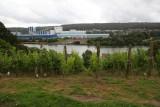 Vignes-paysage-dame-palate