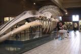 Aquarium museum @ FTPL Y.Gabriel