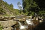 Parc Naturel Hautes Fagnes Eifel - Waimes - CascadeBayehon