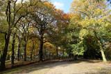 Parc de Cointe