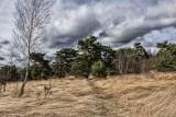 Balade Bois les Dames - Chaudfontaine - vue avec ciel très nuageux