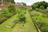 Jardin Plantes Pitet - Braives - Jardin