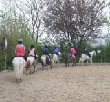 Centre Equestre du Rond-Puits4