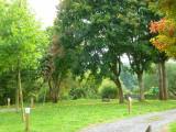 Arboretum de Coingsoux_©RSIL (3)