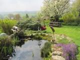B&B Au pays des saveurs - Charneux - jardin
